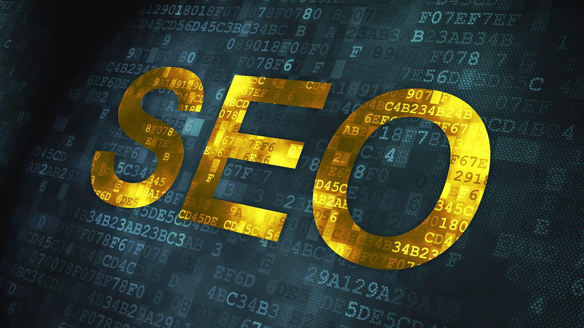 Recognize The Importance of SEO For Your Online Business